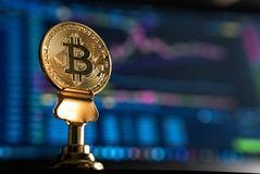 Psychologische Fehler beim Traden von Kryptowährung