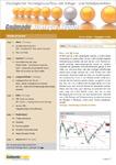Börsenbrief Strategie-Report